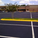 Tar Surface Installer Honeypark